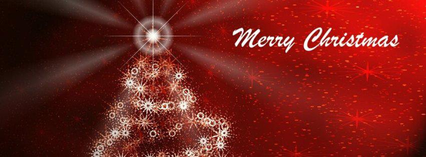 We want to wish you a very Merry Christmas and a Happy New Year!